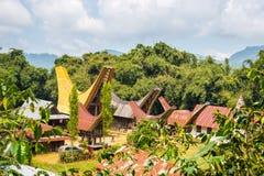 Traditionell by, Tana Toraja Royaltyfri Foto