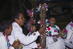 Traditionell Taru musikspelare i Terai, Nepal Arkivfoton