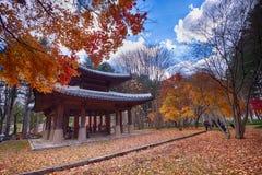 Traditionell tempel Korea för Namisum ö royaltyfri bild