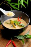 Traditionell thai kryddig röd curry Fotografering för Bildbyråer
