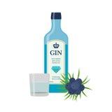 Traditionell torr gin i blåttflaskan, enbär Torr gin royaltyfri illustrationer