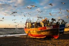 Traditionell träcommerical fiskebåt på stranden Arkivfoto