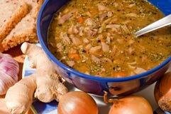 traditionell tripe för soup Arkivfoto