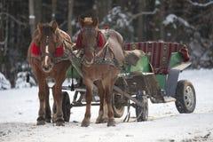 Traditionell ukrainsk julhästvagn. Arkivfoto