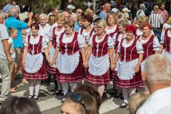 Traditionell ungersk druvahändelsedeltagare i höst i en by Badacsony 09 09 Ungern 2018 arkivfoto