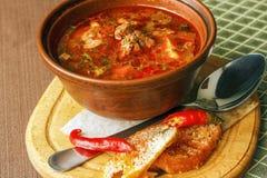 Traditionell ungersk gulaschsoppa royaltyfria foton