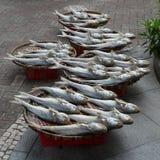 Traditionell uttorkning av den rimmade fisken Fotografering för Bildbyråer