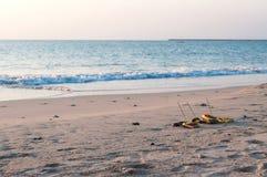 Traditionella balineseofferings till gudar på stranden Royaltyfri Bild