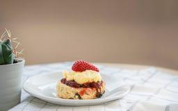 Traditionella engelska sconeser med jordgubbedriftstopp och slags tjock grädde som överträffas med den nya jordgubben Royaltyfri Fotografi