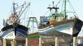 Traditionella fiskebåtar i porthamn av Essaouira, Marocko lager videofilmer