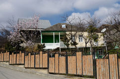 Traditionella georgian arkitektur- och vårblomningträd Mtskheta Royaltyfria Foton