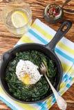 Traditionella gourmet- frukostspenat, grönkål och tjuvjagad äggintelligens royaltyfria bilder