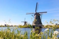 Traditionella holländska väderkvarnar nära kanalen i Kinderdijk Royaltyfri Foto