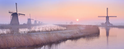 Traditionella holländska väderkvarnar på soluppgång på Kinderdijken Royaltyfria Bilder