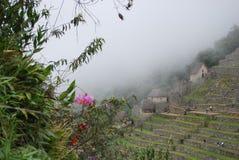 Traditionella hus i Machu Picchu Arkivbild
