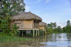 Traditionella hus på Mekong River, Vietnam Royaltyfri Bild