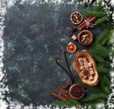 Traditionella julkryddor på grön bakgrund Arkivbilder