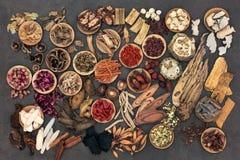 Traditionella kinesiska örtar Royaltyfri Foto