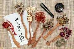 Traditionella kinesiska örtar Arkivfoton