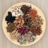 Traditionella kinesiska örtar Royaltyfria Bilder