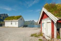 Traditionella lantliga byggnader med gräsmarktaket i Lofoten Royaltyfria Bilder