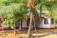 Traditionella lantliga husställningar bland kokosnöten gömma i handflatan på en solig dag Royaltyfria Bilder