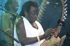 Traditionella musiker. royaltyfri fotografi