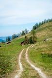 Traditionella träkojor i Österrike Arkivfoto