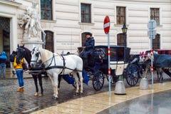 Traditionella vagnar med hästar som väntar på turister, Wien, royaltyfria foton