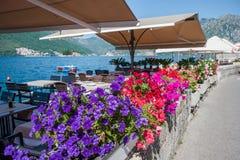 Traditionelle adriatische Landschaft Stockbilder
