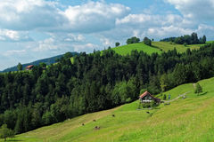 Traditionelle Alpe in der vor-alpinen Landschaft Stockfotografie
