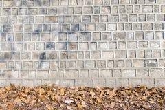 Traditionelle alte Steinwand und trockenes Blatt, Muster und backgro Stockfotos