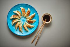 Traditionelle asiatische Mehlklöße Gyozas auf keramischer Platte des Türkises stockfotos