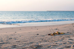 Traditionelle Balineseangebote zu den Göttern auf dem Strand lizenzfreies stockbild