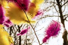 Traditionelle bunte Federn auf Bäumen für Straßendekorationen f Stockbild