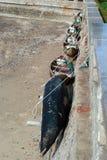 Traditionelle Fischerboote lizenzfreies stockfoto