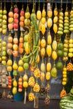 Traditionelle Früchte Amazonic Lizenzfreie Stockfotos