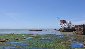 Traditionelle französische Fischereikabinen Girond-Mündung lizenzfreie stockfotografie