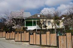 Traditionelle georgische Architektur- und Frühlingsblütenbäume Mtskheta Lizenzfreie Stockfotos