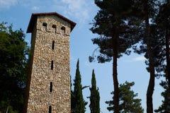 Traditionelle georgische Turmfestung lizenzfreies stockfoto