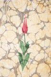 Traditionelle Gestaltungsarbeit des gemarmorten Papiers - Tulpe Lizenzfreie Stockbilder