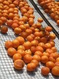 Traditionelle getrocknete Lebensmittelzubereitung: DryingMandarin Lizenzfreies Stockfoto