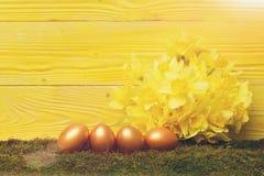 Traditionelle goldene Eier Ostern, entspringen gelbe Narzissenblume Stockfoto