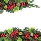 Traditionelle Grenze der Winter-Flora Stockfotografie