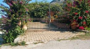 Traditionelle griechische Tür mit bunten Blumen Stockbilder