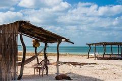Traditionelle Hängematte neben dem Strand lizenzfreie stockfotografie