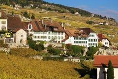 Traditionelle Häuser in Lavaux, die Schweiz Lizenzfreies Stockbild