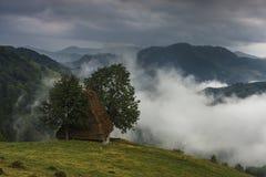 Traditionelle Häuser mit Strohdach und -nebel Stockbilder