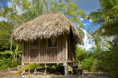 Traditionelle Hütte in Belize Stockbild