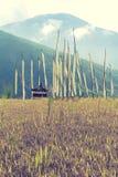 Traditionelle heilige buddhistische Gebetsflaggen auf einem Reisgebiet im Tal von Thimphu, Bhutan Lizenzfreie Stockfotos